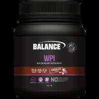 100% Whey Protein WPC/WPI 750g